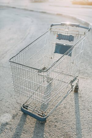 Food basket and the girl's hands. Trolley for shopping products in the supermarket.