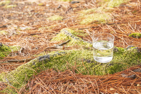 Clear water in a transparent glass on a background of green moss in a coniferous forest. Healthy food and ecologically pure natural water from a forest spring for healing