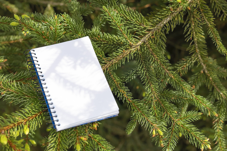 Notepad and black and gold pen on the background of a coniferous fir tree. The concept of working and studying in the park in nature