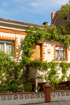 Oviedo, Spain, Asturias - August 2020: Beautiful cottage overgrown with ivy on a city street Editorial