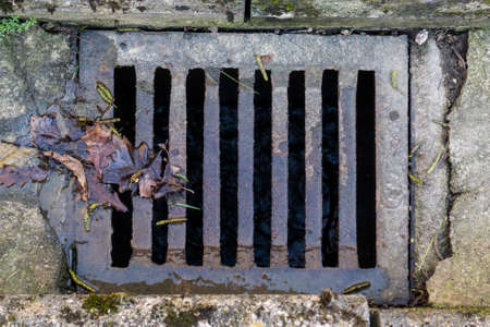 Decaying foliage on a grate of street road drainage on a cracked concrete surface