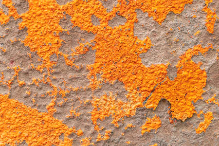 Orange painted peeling stained cement wall surface. Close-up. Abstract backdrop Фото со стока