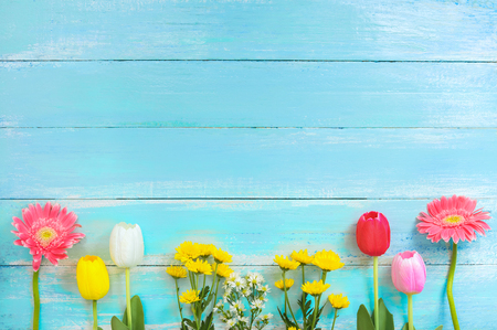 Different kinds of colorful flowers in line on blue wooden background. top view and border design,  flower of spring or summer background 스톡 콘텐츠