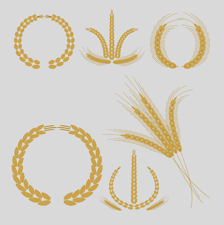 agriculture industry: Cereal grains and ears for logo design or agriculture industry Illustration