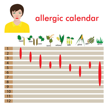 rhinitis: calendar of  allergy seasons. separated on white background.vector format