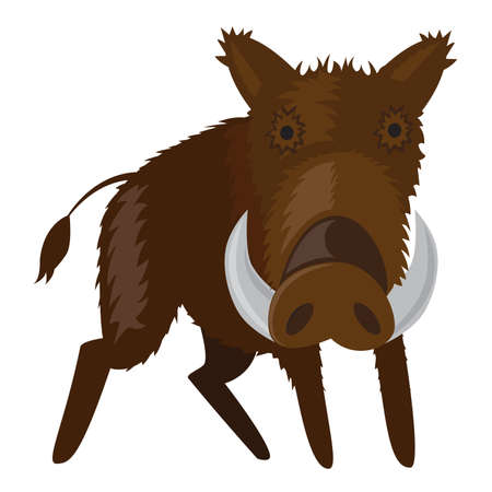 wild hog: illustration of boar - wild pig forest animal. Illustration