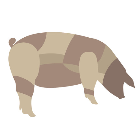 Vector illustration of pork diagram without definitions