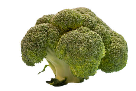 broccoli flower isolated on a white background