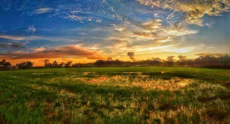 Beautiful sunset assam