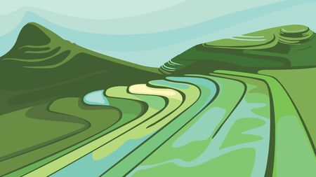 Landscape with paddy fields. Beautiful agricultural scenery. Ilustração Vetorial