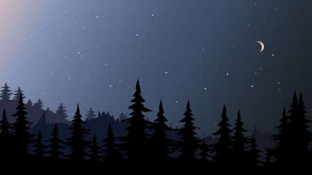 Night forest landscape.