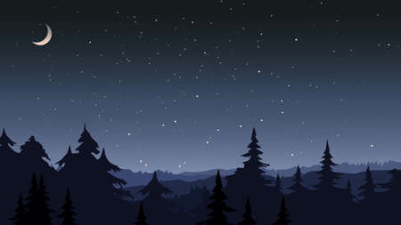 Forest under the starry sky.