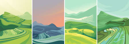 Set of rice terraces in vertical orientation. Beautiful agricultural sceneries.