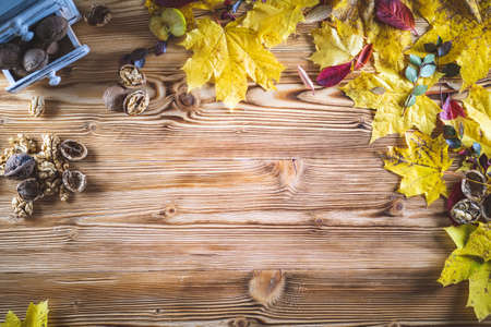 Top view of vivid colors of Autumn background on wooden table board with yellow maple leaves and walnuts