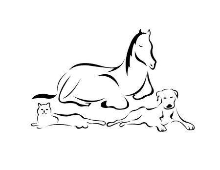 A horse, a cat and a dog