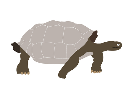 Galapagos tortoise silhouette illustration