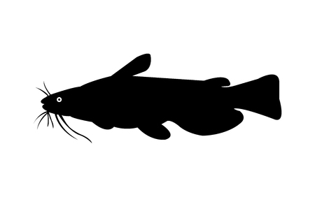 Bullhead catfish silhouette. Illustration
