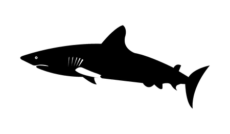 A silhouette of a shark.