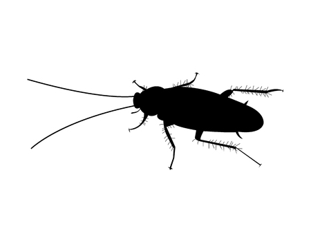 Simple, black cockroach silhouette