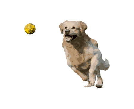 Golden retriever chasing a ball 向量圖像