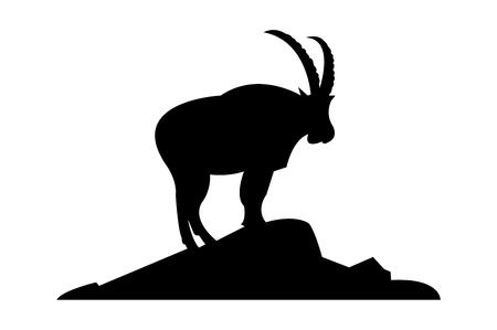 Ibex standing on a cliff