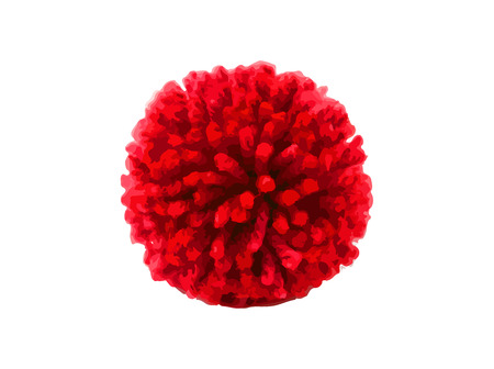 Red pom pom on white background