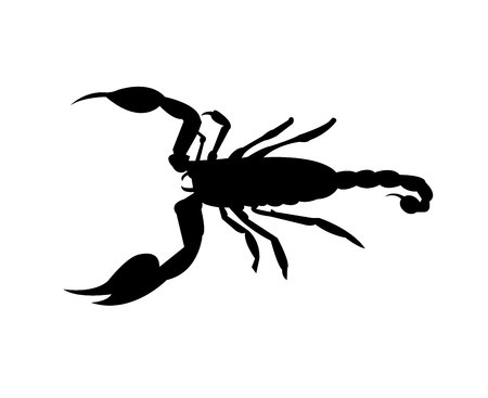 Scorpion black silhouette isolated on white background