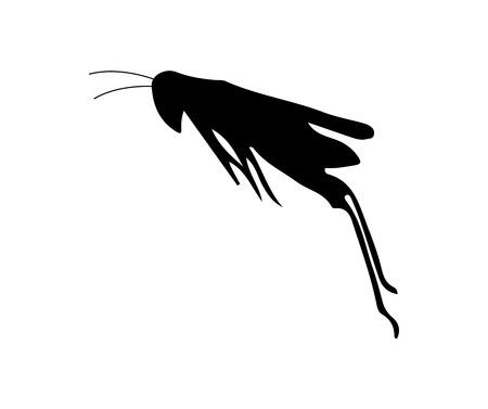 Grasshopper jump black silhouette