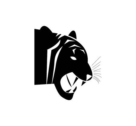 tiger head on white