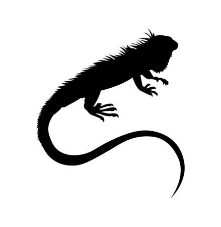 black lizard silhouette on white