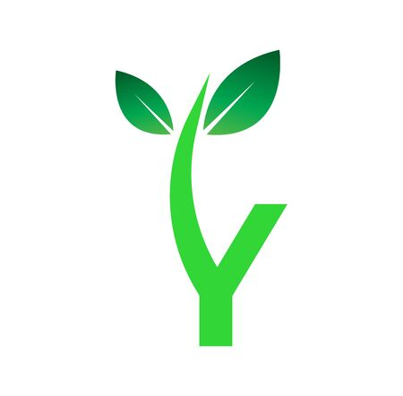 green leaf icon isolated