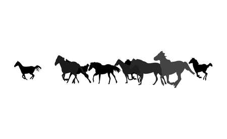 herd of horses running isolated