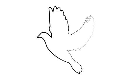 dove of peace icon isolated