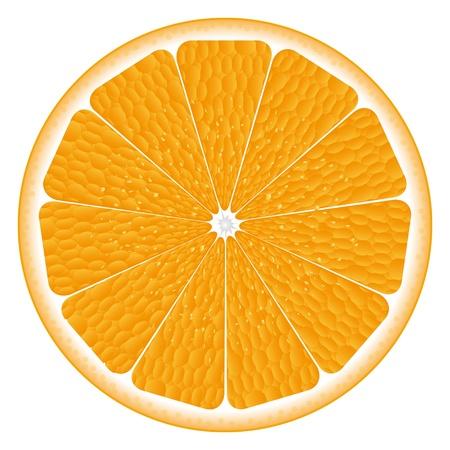 texture of an orange Stock Vector - 16599709