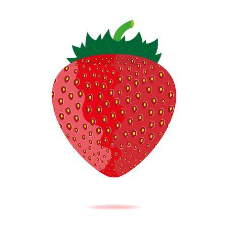 strawberries  Stock Vector - 16599655