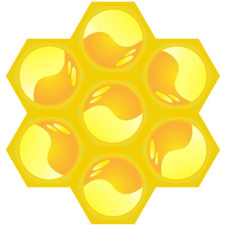 honeycomb Illustration
