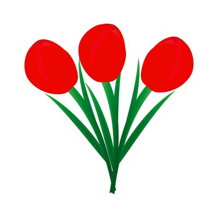compliments: three tulips
