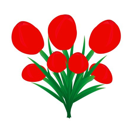 bouquet of red tulips Stock Vector - 18160017