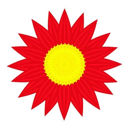 red flower on white background Stock Vector - 19987795