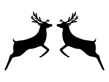 hoofed mammal: reindeer isolated on white background