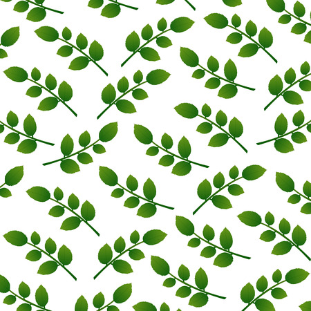 full bodied: background of green leaves Illustration