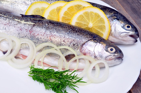 two fresh trout and lemon photo