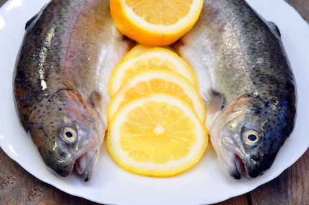 rainbow trout with lemon  photo