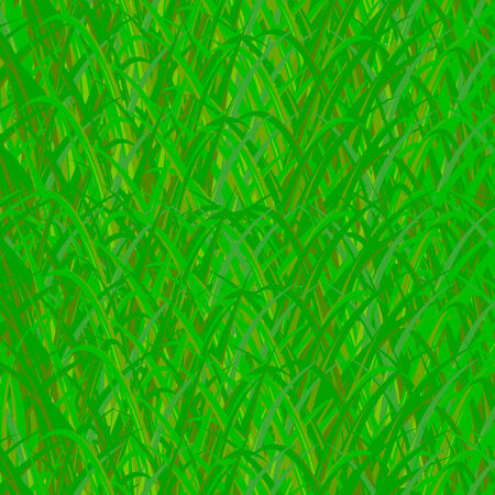 sedge: background of green grass Illustration