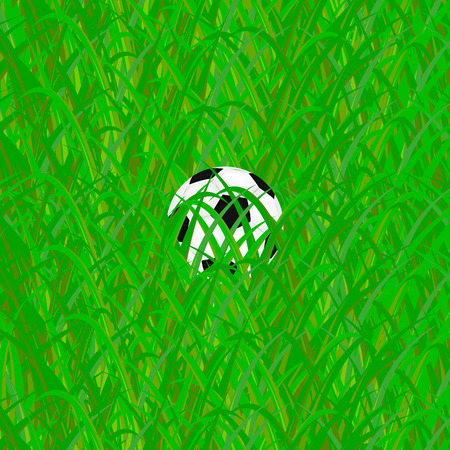 soccer ball in grass Vector
