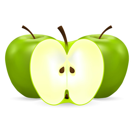 two whole and half green apples on a white background Vector