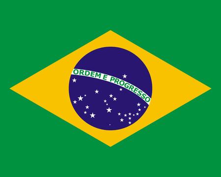 brazil flag: official national flag of Brazil
