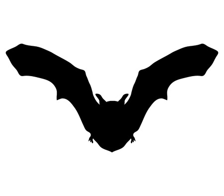 silhouette bat Vector