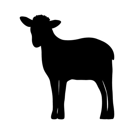Silhouette of a sheep on white background