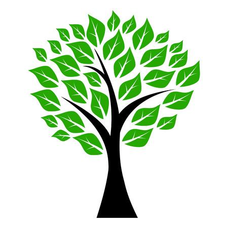 dessin au trait: arbres à feuilles